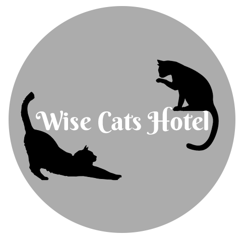 Wise Cats Hotel